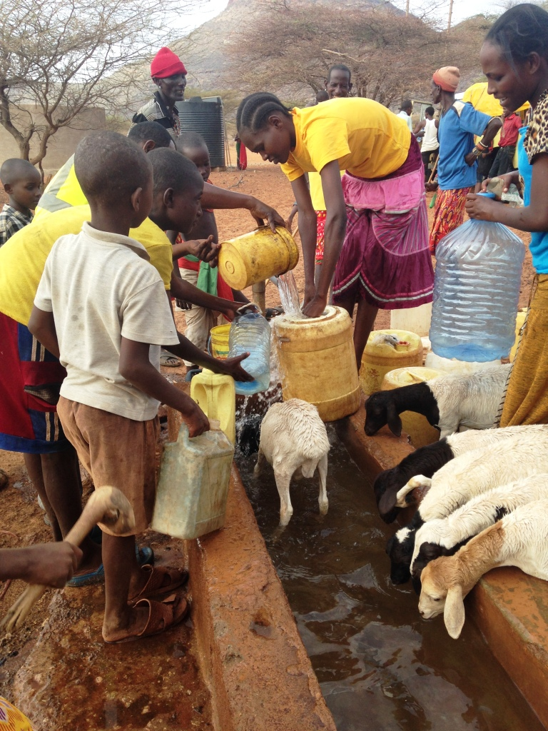 Kindfund goats drink from water trough in Northern Kenya